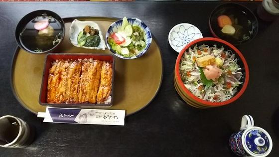いわし料理 かずさ (12).JPG